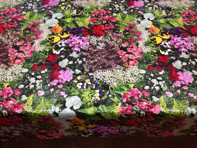 wachstuch tischdecke c147120 roses blumen floral rund. Black Bedroom Furniture Sets. Home Design Ideas