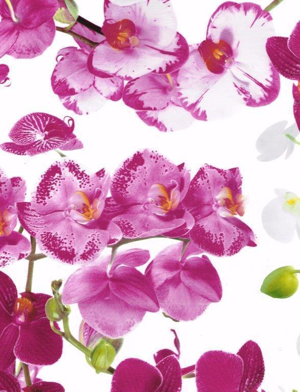 wachstuch tischdecke meterware premium b8990 01 orchideen eckig rund oval. Black Bedroom Furniture Sets. Home Design Ideas